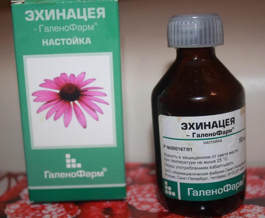 ehinacea-2