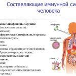 Медикаментозное укрепление иммунитета: витамины, капли, уколы